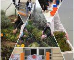 Taller de huerto y cocina en el Colegio de la Inmaculada Ikastetxea